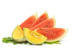 Lappar av vattenmelon- och cantaloupemelonen fotografering för bildbyråer