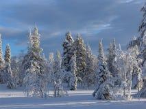 Lappland stockbilder