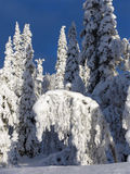Lappland Lizenzfreie Stockfotos