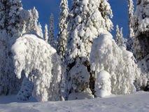 Lappland Lizenzfreie Stockfotografie