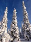 Lappland Stockbild