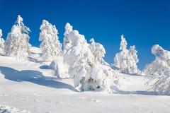 Lappland Finnland Stockbild
