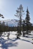 Lappland, Finnland Lizenzfreies Stockfoto