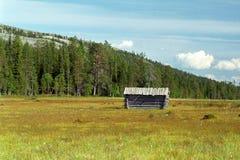 Lappland-Sumpf lizenzfreie stockfotografie