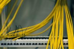 Lapppanel med kablar, växling, datanätverksutplacering Arkivbild
