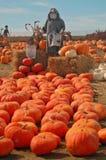lapppumpascarecrow royaltyfri fotografi
