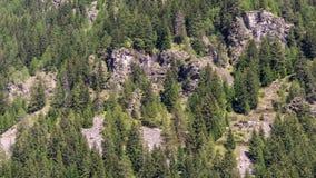 Laps de temps d'une forêt dans la vallée de Gressoney avec le soleil de affaiblissement clips vidéos