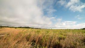 Laps de temps de parc national de volcans de caldeira de Kilauea banque de vidéos