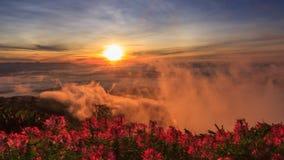 Laps de temps de mer de brume sur la haute montagne avec la lumière du soleil banque de vidéos