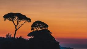 Lapso de tempo, ajuste bonito do sol do por do sol atr?s das ?rvores em montes de It?lia em Sorrento, lugar da fibra em It?lia video estoque