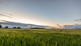 Lapso de tempo Campo verde e amarelo do raye Nuvens Por do sol video estoque