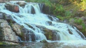 Lapso de tempo da cachoeira bonita na floresta, marco natural video estoque