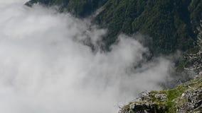 lapso de tempo da névoa video estoque