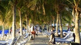 Lapso de tempo da praia tropical video estoque