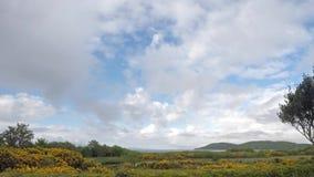 Lapso de tempo das nuvens que movem-se rapidamente sobre a baía filme