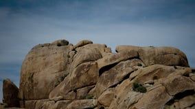 Lapso de tempo de Joshua Tree Desert Landscape na noite vídeos de arquivo