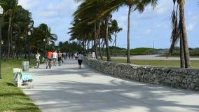 Lapso de tempo de pedestres de Miami Beach vídeos de arquivo