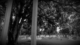 Lapso de tempo do cemitério filme