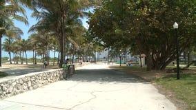 Lapso de tempo do parque de Miami Beach vídeos de arquivo