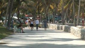 Lapso de tempo do parque 1 de Miami Beach de 5 vídeos de arquivo