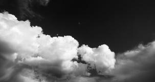 lapso de tempo 4k do voo inchado branco no céu, céu da massa da nuvem, platô de Tibet filme