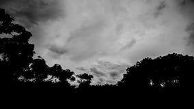 Lapso de tempo preto e branco das nuvens vídeos de arquivo