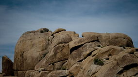 Lapso de tiempo de Joshua Tree Desert Landscape en la noche almacen de metraje de vídeo