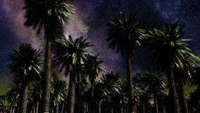 Lapso de tiempo de la estrella, galaxia de la vía láctea que se mueve a través del cielo nocturno y palmas ilustración del vector