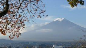 Lapso de tiempo de la temporada de otoño del Mt Fuji en Japón con color amarillo agradable almacen de video