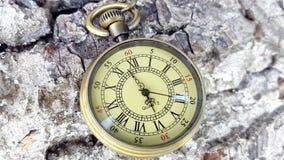 Lapso de tiempo del reloj del bolsillo Seis horas de reloj del bolsillo metrajes
