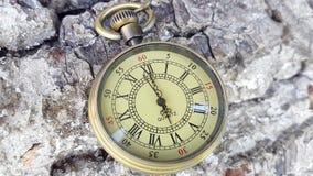 Lapso de tiempo del reloj del bolsillo Seis horas de reloj del bolsillo almacen de video