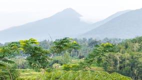 lapso de tiempo 4K del paisaje tropical en la isla de Bali, Indonesia Vista a las montañas almacen de video