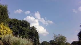 Lapso de tiempo de la mudanza y de la formación de las nubes de cúmulo almacen de video
