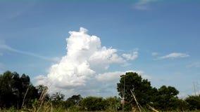 Lapso de tiempo de la nube natural almacen de metraje de vídeo