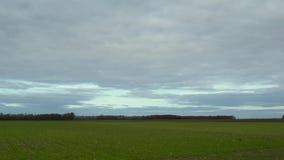 Lapso de tiempo de las nubes que se mueven rápidamente sobre campo verde almacen de video