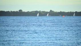 Lapso de tiempo de los veleros que navegan en el agua del mar, del lago o del río, almacen de video