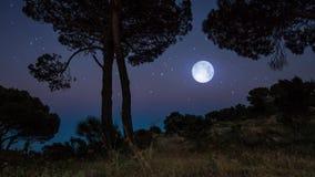 Lapso de tiempo que sigue el tiro de una puesta del sol con la Luna Llena que brilla intensamente almacen de video