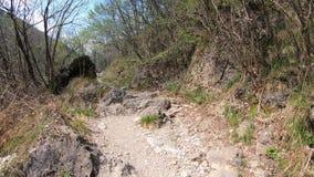 Lapso h?per que camina en las trayectorias en el bosque de las monta?as italianas El tiempo de primavera? subi? las hojas, fondo