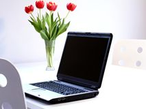 Laptop. In a clean white office with red tulips Royalty Free Stock Photo