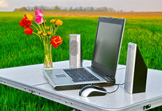 Laptop auf der Natur Stockfoto
