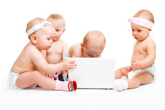 Laptop babies Royalty Free Stock Photo