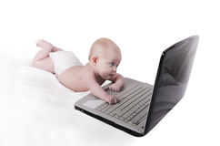 Laptop baby Royalty Free Stock Photos