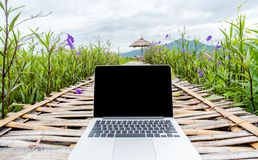 Laptop with blank screen on wooden road in nature outdoor park.  stock images