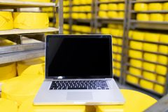 Laptop with blank screen on yellow cheese heads close up. cheese room stock images