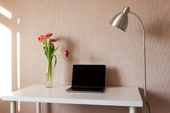 Laptop, bouquet of tulips and metallic lamp on white table. royalty free stock images