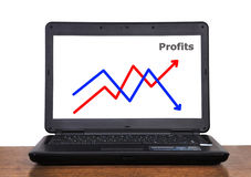 Laptop with chart profit Stock Photography