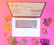 Laptop com projetos gráficos e folhas de bordo do outono Fotos de Stock Royalty Free