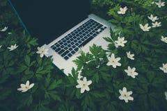 Laptop computer bij de natuurlijke bosachtergrond, de lentebloemen Stock Fotografie