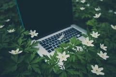 Laptop computer bij de natuurlijke bosachtergrond, de lentebloemen Royalty-vrije Stock Foto's