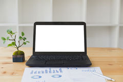 Laptop computer with blank white screen, artificial plant pot, g. Laptop computer notebook with blank white screen, artificial plant pot, graph chart paper on Royalty Free Stock Photography